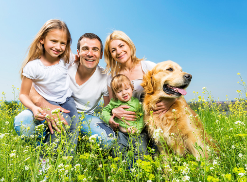 Дали чувањето домашен миленик - куче е добар избор за вас и вашето семејство?