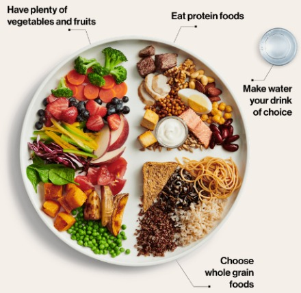 Simple Healthy Eating Diet Plan to Lose Weight - The Canadian Food Guide 2019 on a plate