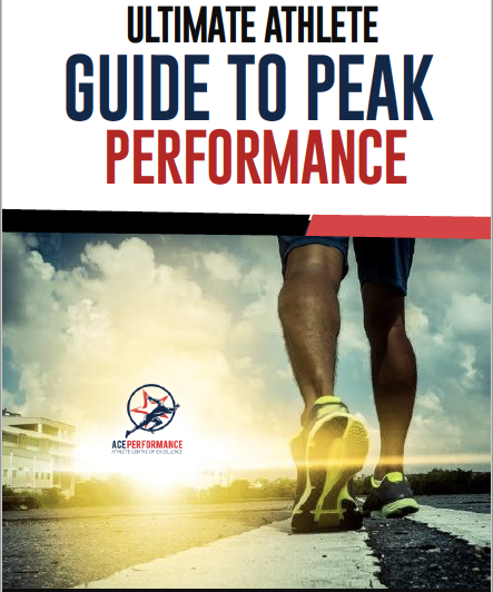 The ACE Performance E-Book