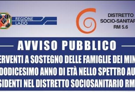 INTERVENTI A SOSTEGNO DELLE FAMIGLIE DEI MINORI FINO AL DODICESIMO ANNO DI ETÀ ...
