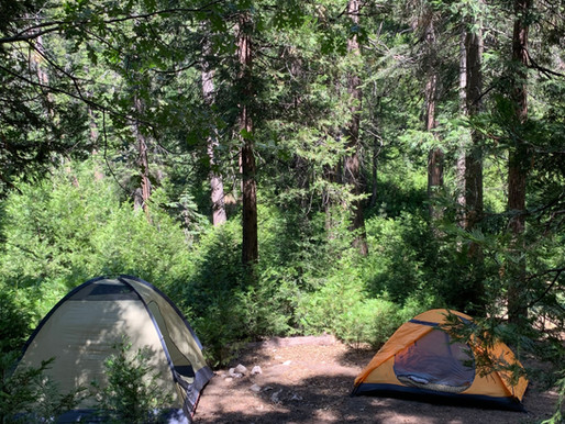 Camping at Dogwood Campground in the San Bernardino National Forest