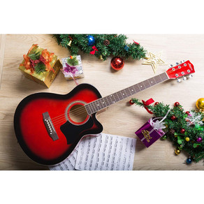 8 BEST ACOUSTIC GUITAR IN INDIA  2020 WITH PRICES