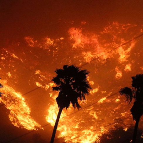 How to Help the Southern California Wildfire Victims (from Anywhere in the World)