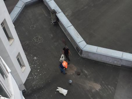 А из нашего окна... крыша чистая видна!
