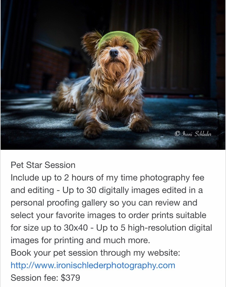 Pet life style