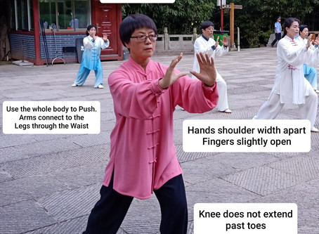 Elements of Tai Chi Practice