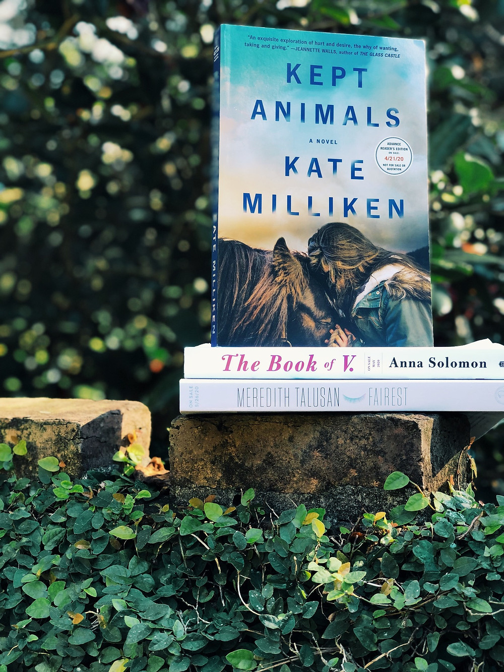 Kept Animals stands atop a couple of other books in an outdoor space.