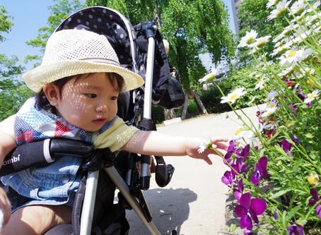 Loopi – Die Idee hinter dem smarten Kinderwagen