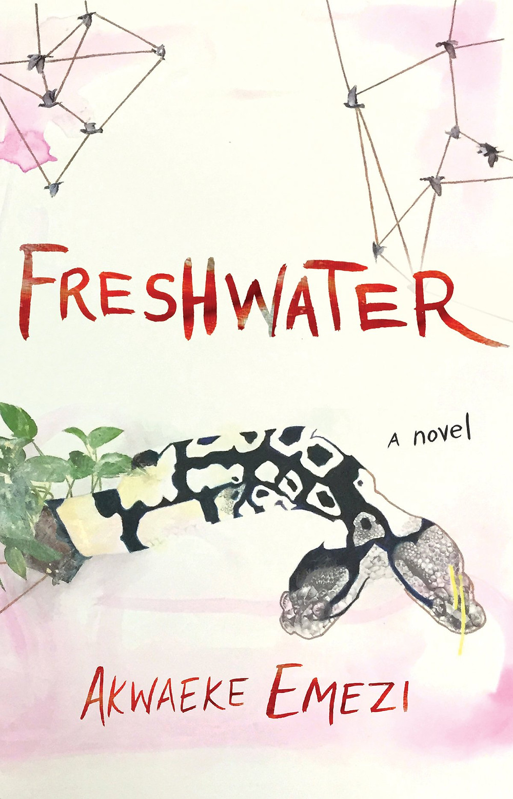 Freshwater by Awaeke Emezi : the book slut