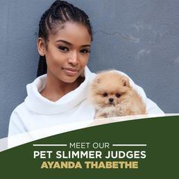 Celebrities get behind making pet health a priority.