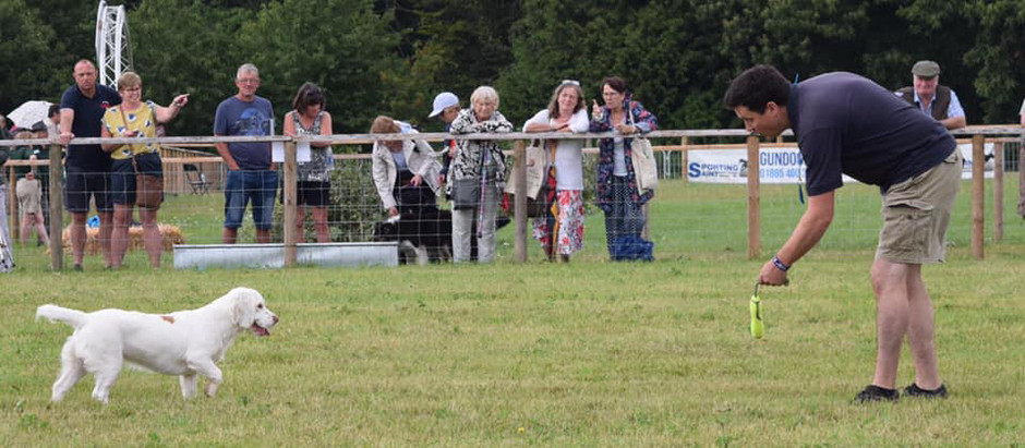 Taking part in a WCSS demo at the Game Fair by David Chilvers