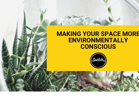 Making your space more environmentally conscious