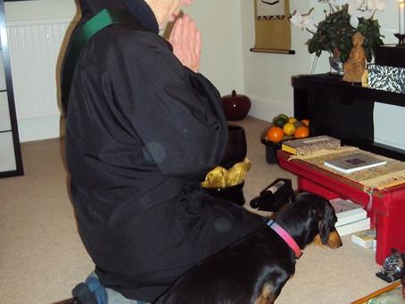 Buddhist-Christian dialogue of life
