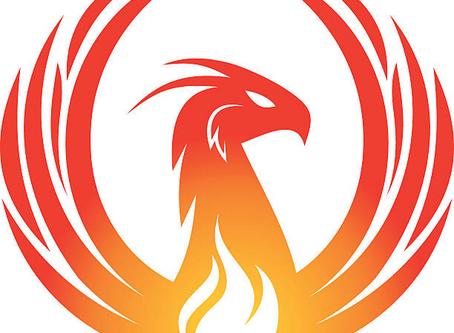 Business Phoenix Launches