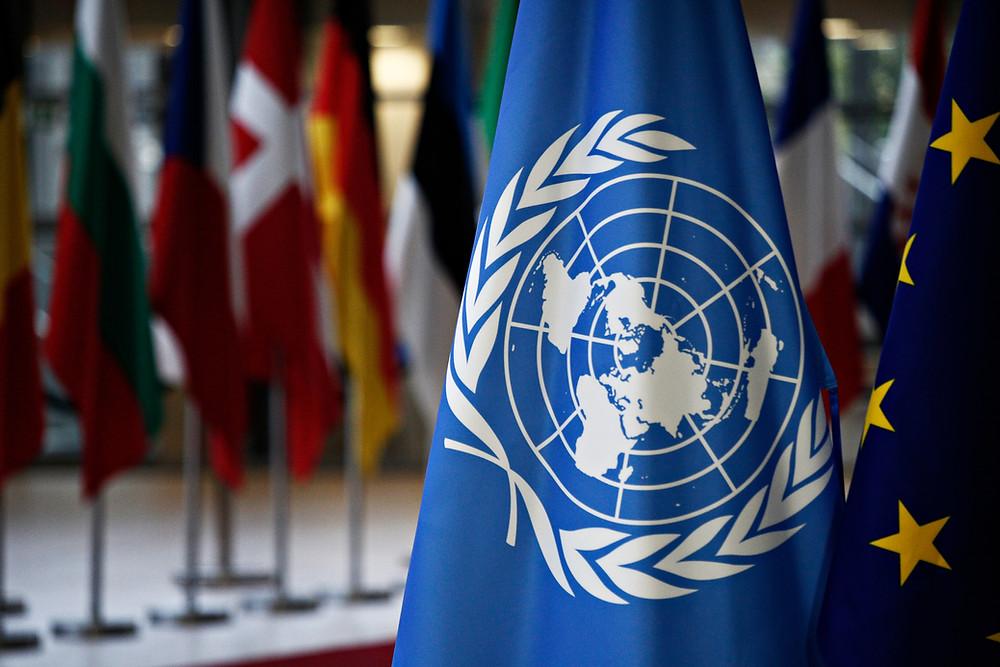 drapeau , ONU , assemblée des nations unis , Assemblée de l'ONU pour l'environnement