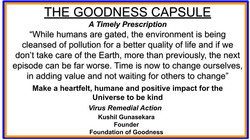 GOODNESS CAPSULE 10