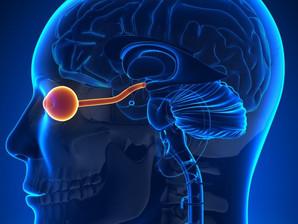 Neuromielite Óptica ou Doença de Devic. Você já ouviu falar?
