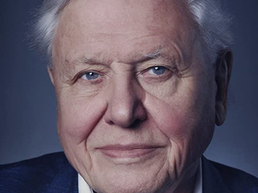 David Attenborough: A Life on Our Planet – Netflix documentary review