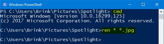 Enter the command into PowerShell