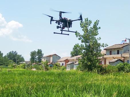Cara Menggunakan Software Drone Pix4D Mapper Untuk Estimasi Hasil Panen Padi