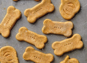 6 Delicious Dog Treat Recipes to Make at Home