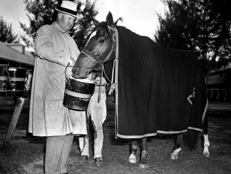 10 Facts about Whirlaway