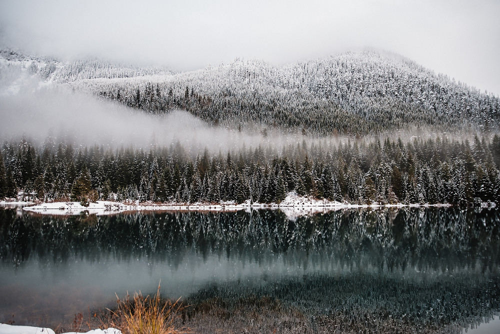 Gold Creek Pond during the winter