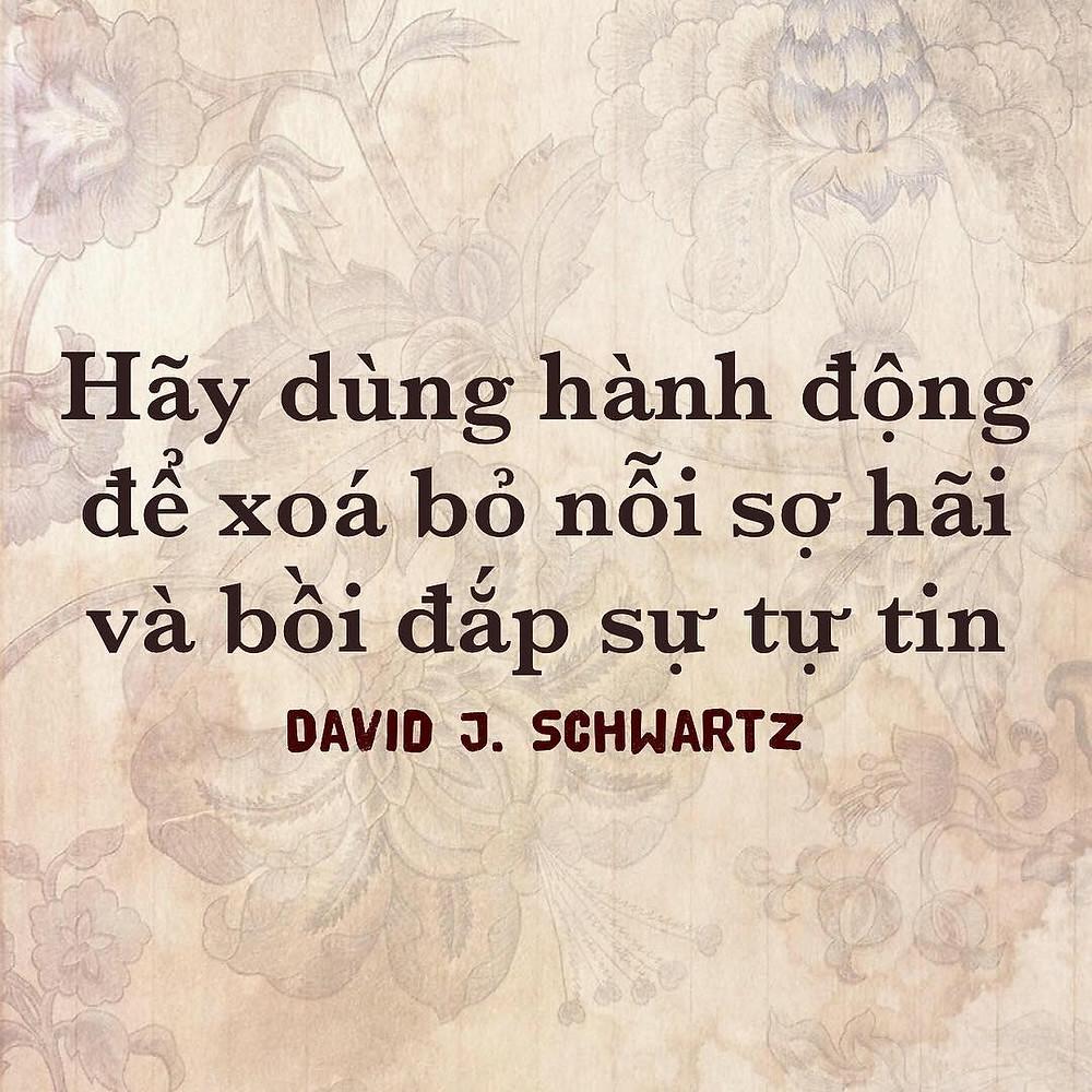 Hành động David Schwartz