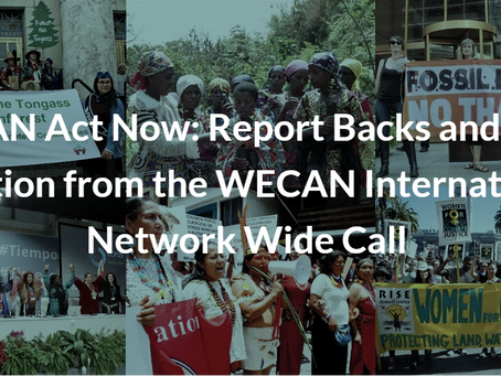 WECAN Act Now: Report Backs and Calls to Action from the WECAN International Network Wide Call