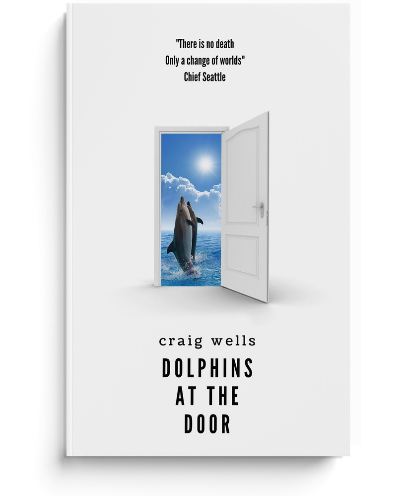 Dolphins At The Door