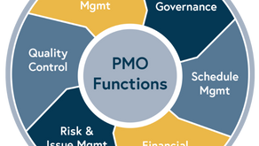 [Case Study] Program Management Office (PMO) Support