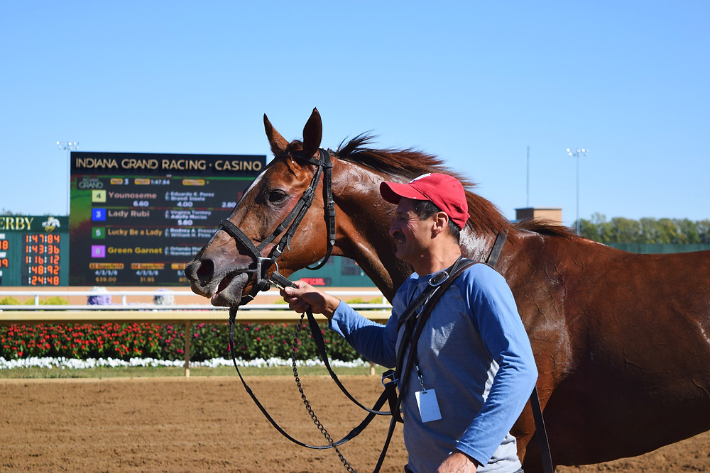Hores racing groom, Indiana Grand