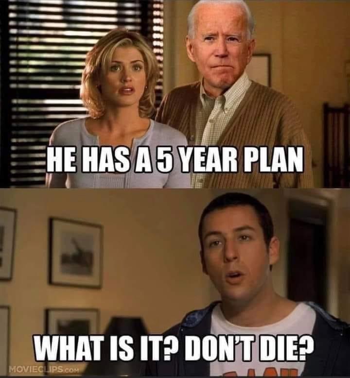 Biden has a 5 year plan - not to die?