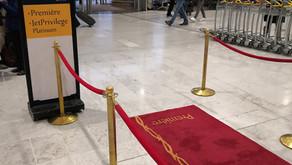 JET AIRWAYS # Flight Review • 9W 127 [ PARIS → CHENNAI ] A330 • ECONOMY (JAN.2019)