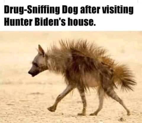 Hunter Biden Memes