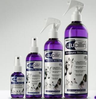Healthcare: Leucillin Antiseptic Spray