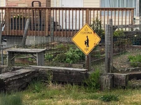 Crossing Signs Common on Bainbridge Island
