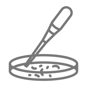 5864856 - disease dish petri pipette