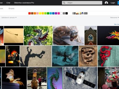 Flickr e Domínio Público