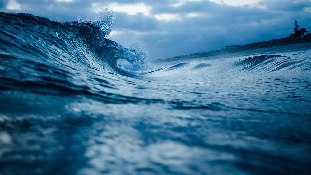 Oceano blu Marketing a brandelli W. Chan Kim  Renée Mauborgne