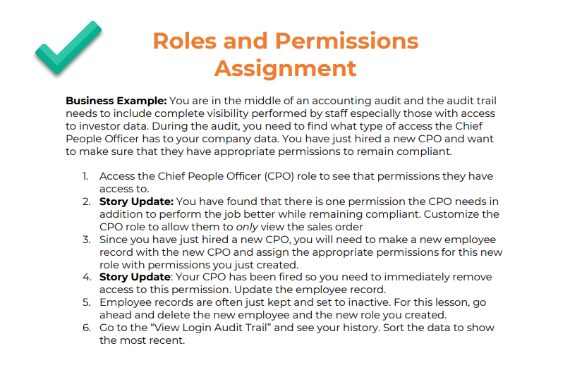 NetSuite Roles and Permissions Assignment Sample