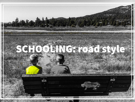 Exposed: schooling road style