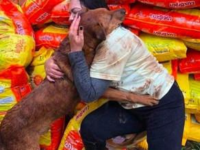 Perro abraza a mujer en agradecimiento por donar croquetas para él y sus amiguitos