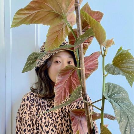 Indoor Plant Passions: Suki Kwon