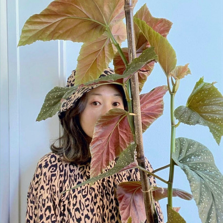 Houseplant Styling: Six things we learned talking to Suki Kwon this week