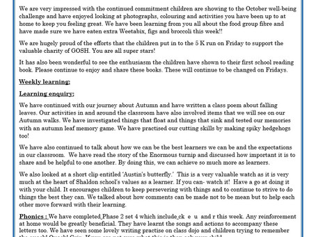 Reception Weekly Letter 16/10/20