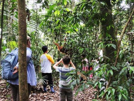 100% Free Accommodation 1 Night - Getaway DEAL Orangutan Trekking - Min 2 Paxs.