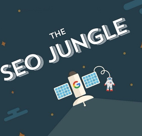 Navigating The Wild Jungle Of SEO