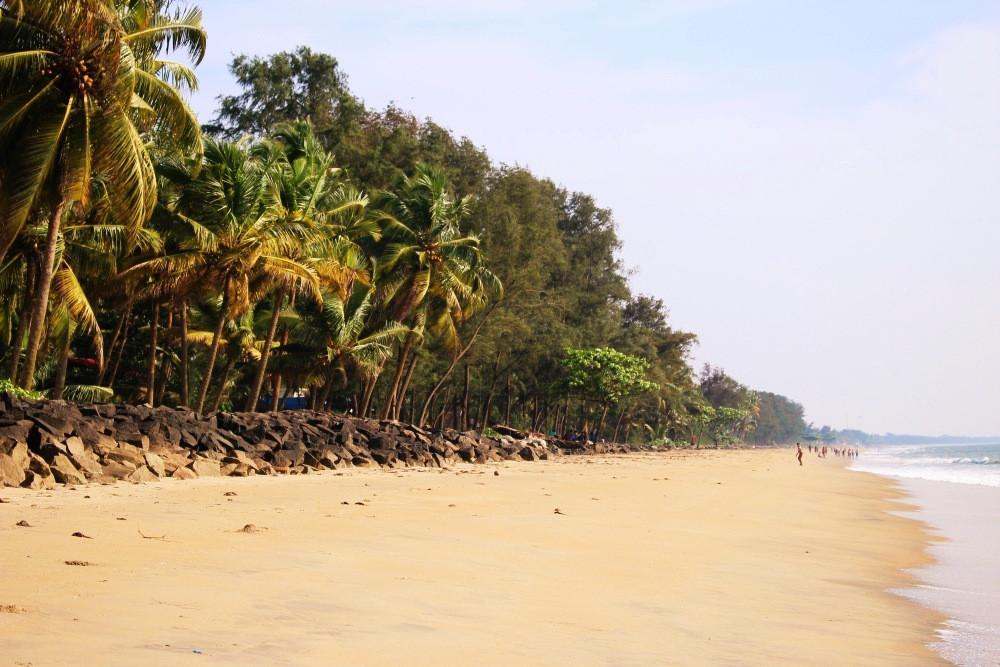 cherrai beach kerala plage