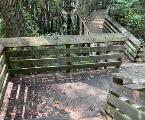 nature, kids, motherhood, hiking